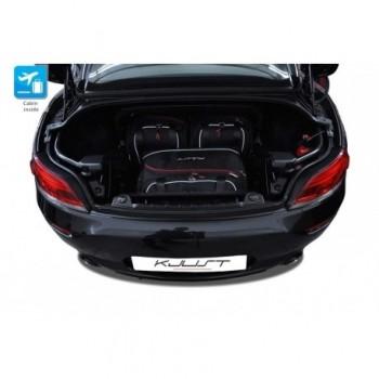 Maßgeschneiderter Kofferbausatz für BMW Z4 E89 (2009 - 2018)
